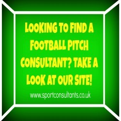 Sports Turf Consultancy in Ashley 1