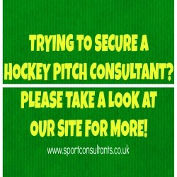Sports Turf Consultancy in Ashley 5