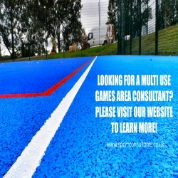 Sports Turf Consultancy in Ashley 6
